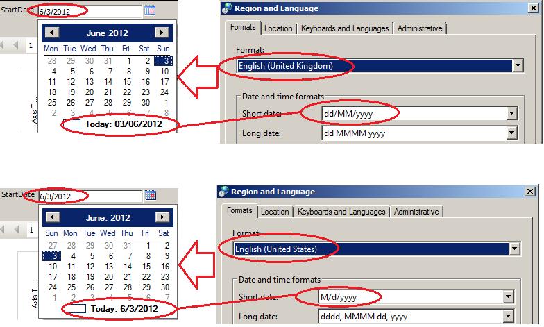 SSRS Datetime Parameter value should display in DD/MM/YYYY