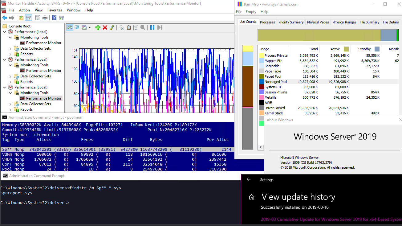 spaceport.sys memory leak in WS2019-03