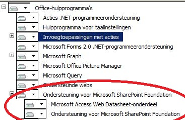 Office 2010 prof plus installation option for SharePoint Foundation support Dutch