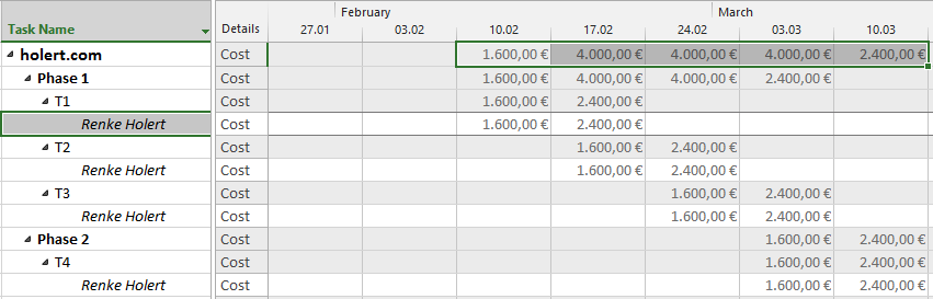 cashflow reports for monthly 2013 msp