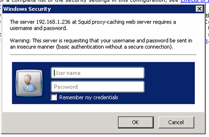 How can I bypass the Squid Proxy? I keep getting a popup