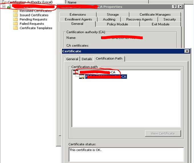 Sccm 2012 Doesnt Work On Https Certification Revocation Failed