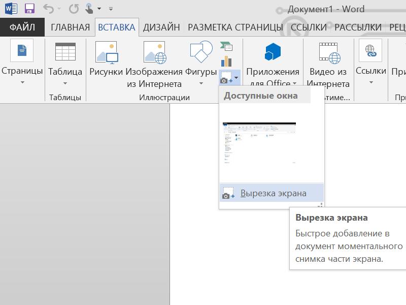 Функция снятия скриншотов в MS Word