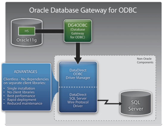 Analyze All Your Data with Oracle Big