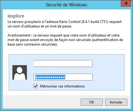 Demande d 39 authentification sur internet explorer for Probleme ouverture fenetre internet explorer