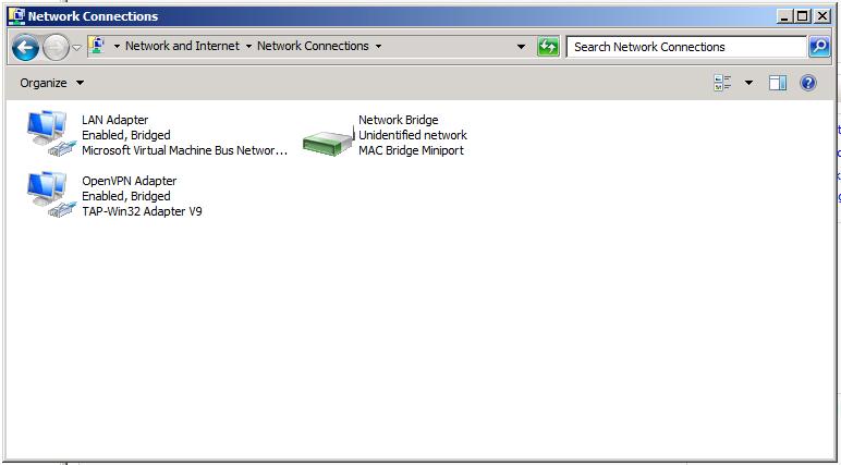 hyper v network adapter not working in machine