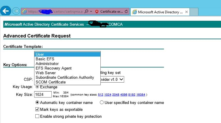 Windows server general forum forum below is the new domain admin account users ca url where the template is not appearing yadclub Choice Image