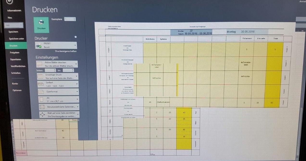 Terminalserver 2012 R2: Bildaufbau mit übereinanderlappender Fenster