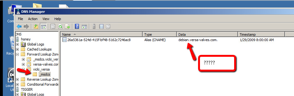 windows 2008 R2 DNS _msdcs greyed out and _sites _tcp