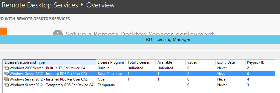 RDS Licensing: No Remote Desktop client access licenses