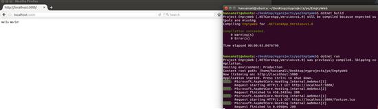 dotnet build and run application