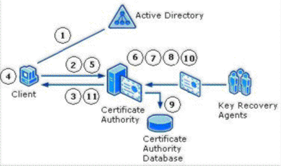 Active directory certificate services pki key archival and note denied and resubmitted requests will also not archive private keys yelopaper Images