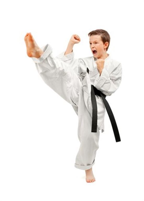 karate test essay The purpose of this article is to explain the benefits in learning karate as listed on   after each belt test the student receives feedback from the examiners – he.